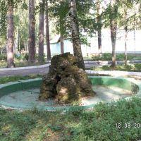 Фонтан у детского корпуса, Васильево