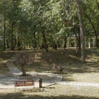 В Александровском парке, Елабуга