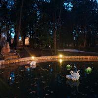 Новый пруд в Александровском парке вечером, Елабуга