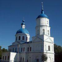 Никольская церковь (первая половина XIX в.), Елабуга