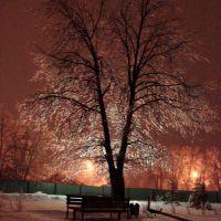 Хрустальное дерево, Заинск