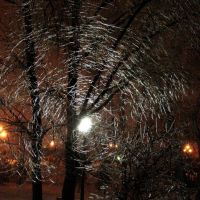 Леденая паутина, Заинск