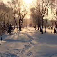 Тропинка к солнцу, Заинск