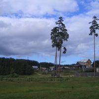 Лесничество Зеленодольска, Зеленодольск