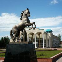 Аргамак. г. Нурлат, Куйбышев