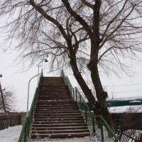 Пешеходный мост, Куйбышев