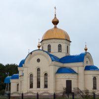 Собор Петра и Павла в Кукморе, Кукмор
