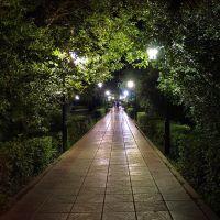 *** Ночная аллея в городском сквере ***, Лениногорск