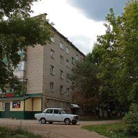 *** Дом №1 по ул Степной. Июль, 2009г. ***, Лениногорск