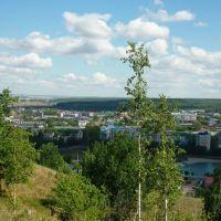 Вид на Лениногорск с холма, Лениногорск