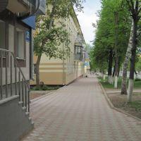 ул. Ленинградская , пешеходная часть улицы, Лениногорск
