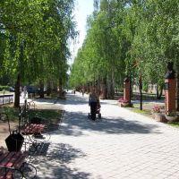 Аллея, Менделеевск