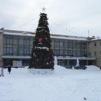Ёлка в Менделеевске, Менделеевск