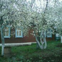 Пестецы. Весна, Пестрецы