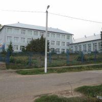 гимназия №1, Рыбная Слобода