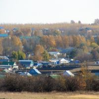 Вид на село Старое Дрожжаное, Старое Дрожжаное
