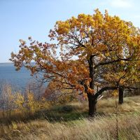 Осень, Тетюши
