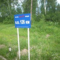 О.п. 126 км, Александровское
