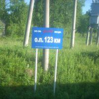 О.п. 123 км, Александровское