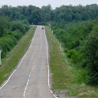 Дорога на Старую Шегарку, 07.2011., Мельниково