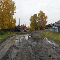 Улица Комарова., Молчаново