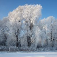 Царство Мороза, Молчаново