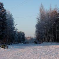 Городской парк, Стрежевой