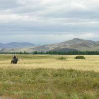 Hills near Sug-Bazhi, Бай Хаак