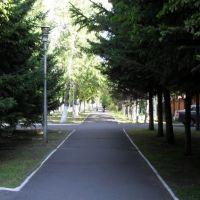 ул.Красных Партизан, Кызыл