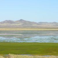 Cheder lake, Самагалтай