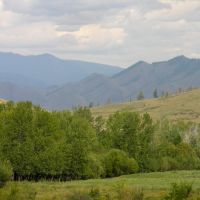 View to Dongul-Taiga mountain range from M54 road, Суть-Холь