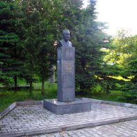 Князь Г.Е. Львов, Алексин