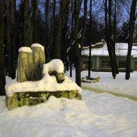 В парке (03.02.2011), Алексин