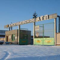 Арсеньевское АТП, Арсеньево