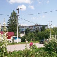 Арсеньево. Улица Парфёнова, Арсеньево