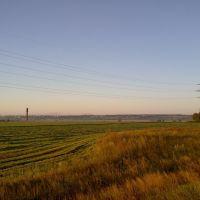 пивзавод на горизонте, Барсуки