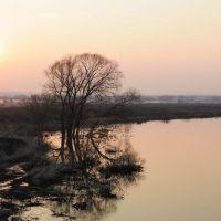 река Упа / The river Upa., Барсуки