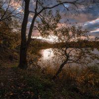 Золото осеннего заката, Барсуки