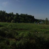 Барсуки 2013, Барсуки