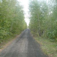 Дорога к шахте., Бегичевский