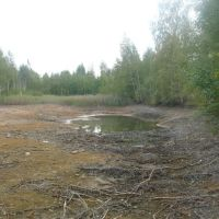 Высыхающие пруды., Бегичевский