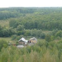 Вид с шахты на лес., Бегичевский