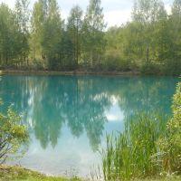 Лесное озеро., Бегичевский