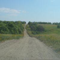 В сторону подстанции., Бегичевский