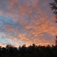Закат в Горках, Велегож