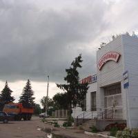 автовокзал в российской глубинке, Венев
