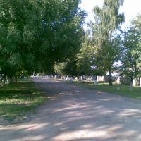 Вид на улицу 30 лет победы, Волово