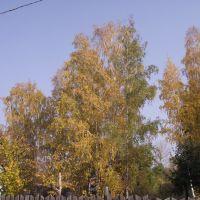 Осень в дачном поселке, Горелки