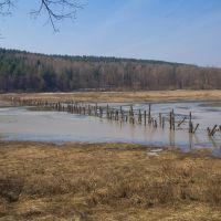 Бывший пруд, бывшие мосты..., Дубна