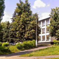 9 школа, Ефремов